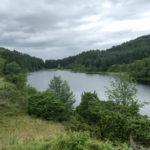 2016-Juli.29-Tur Holeåsen -5