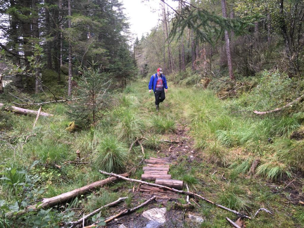 2016-sept-9-tur-til-gronfjellet-1