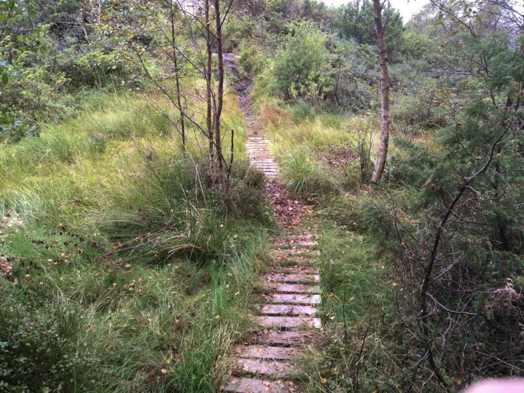 2016-sept-9-tur-til-gronfjellet-10