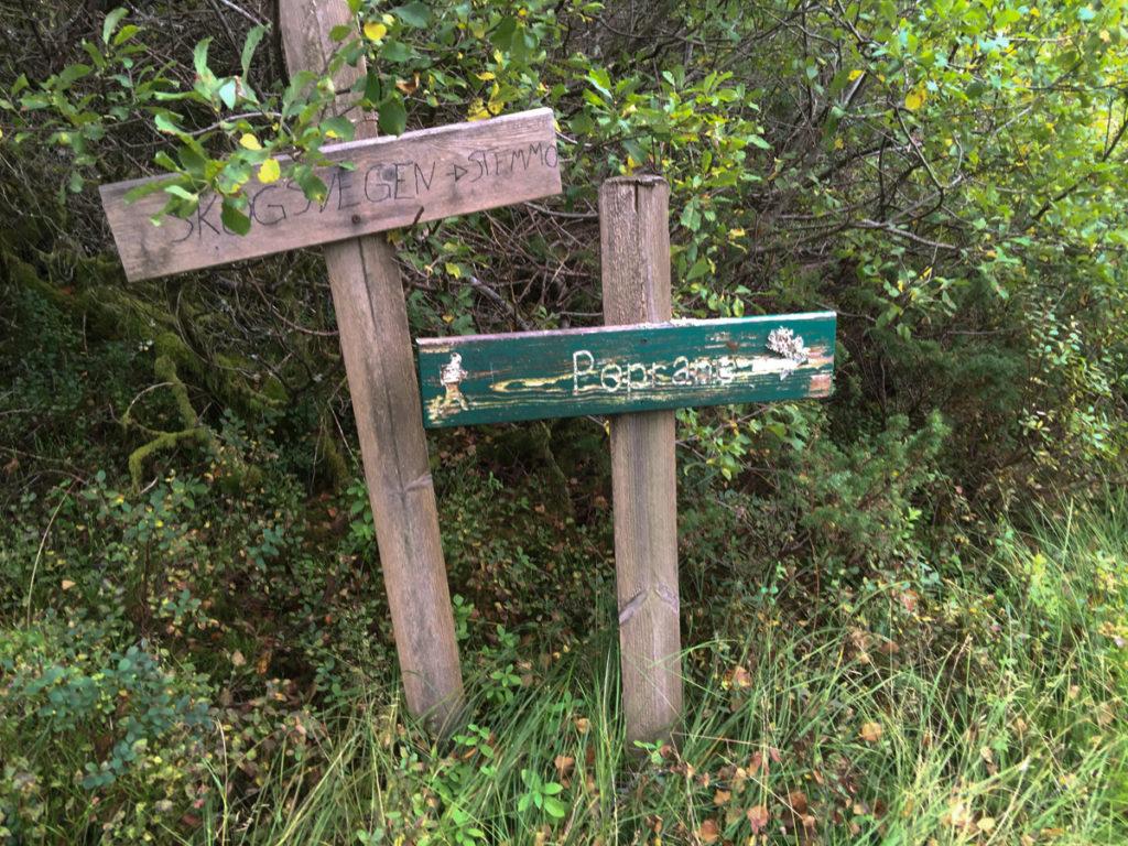 2016-sept-9-tur-til-gronfjellet-9