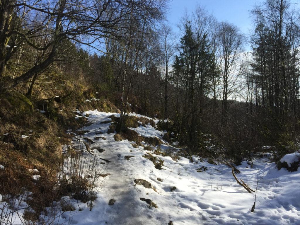 2016-mars-10-opp-skaret-pa-glattisen-3